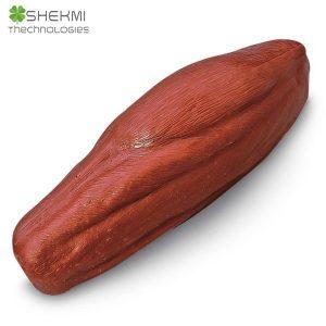 4musculo shekmi